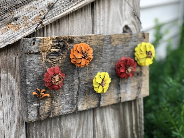 painted pine cones to look like fall flowers for hanging wall art