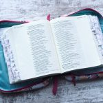 open bible on a white wood grain backdrop. Bible is inside a teal and pink floral bible holder. Bible is open to Proverbs and has tabs for the stories of the bible